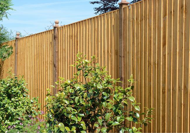 Grange Standard Featheredge Panel