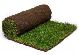 Rolawn Medallion Turf