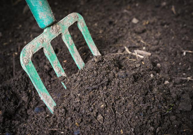 AWBS Value Topsoil