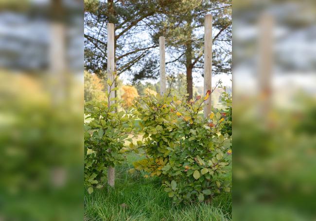 Grange Landscape Pole