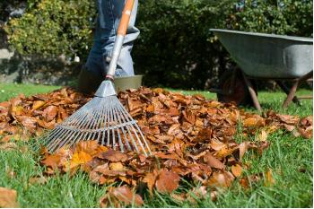 Preparing Your Lawn and Flowerbeds for Winter