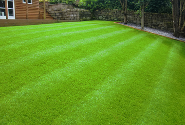 Rolawn Medallion Turf >> Laying Turf is Easy With Our Expert Guide - AWBS